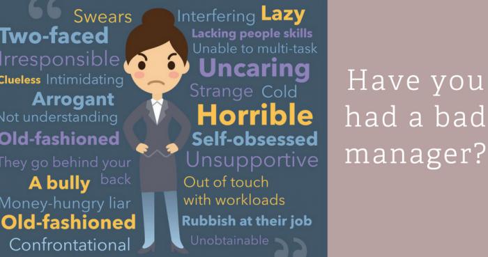 Bad Manager Blog 2