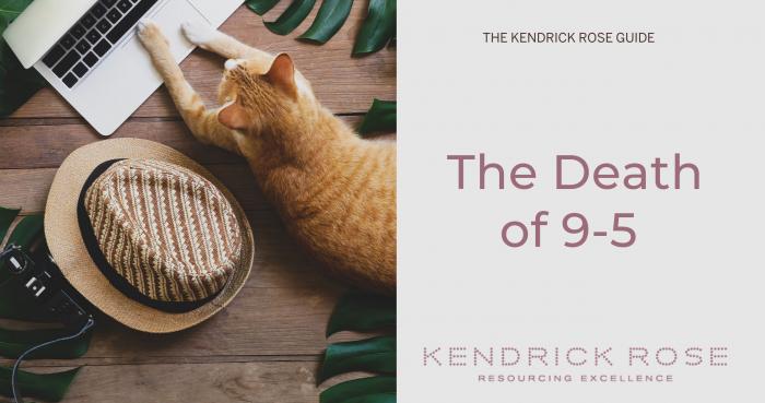 Death Of 9 5 Cat